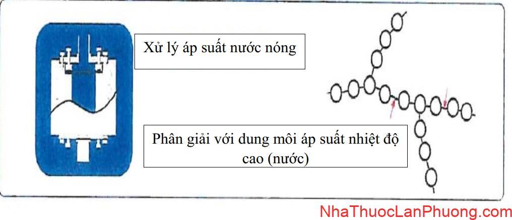 Fukujyusen Xu ly ap suat nuoc nong và phan giai voi dung moi