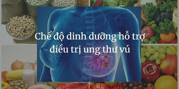 Che do dinh duong ho tro dieu tri ung thu vu (1)
