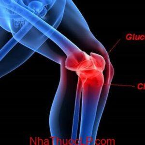 Glucosamine ho tro giam dau viem xuong khop (3)